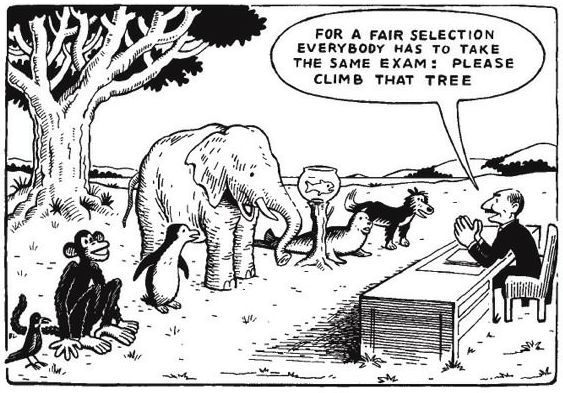"The Education System: ""Now Climb That Tree"" 
