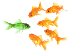 differentiation-fish
