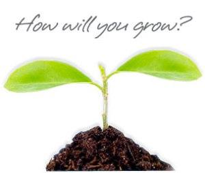 professional_development_plant